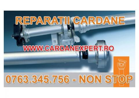 Reparatie Cardan SCANIA 124