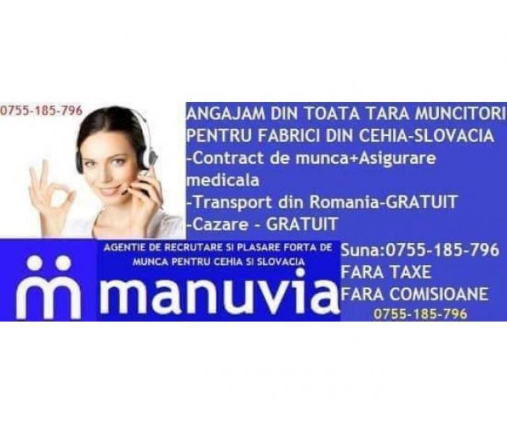 Angajam necalificați in Cehia transport cazare gratuit